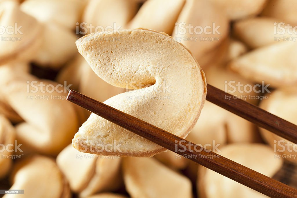 Fresh Made Fortune Cookie royalty-free stock photo