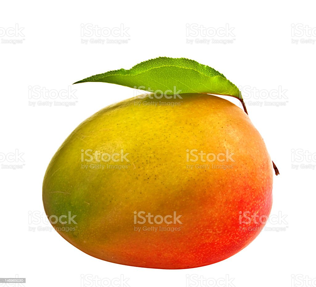 Fresh mango with leaf on white background  stock photo