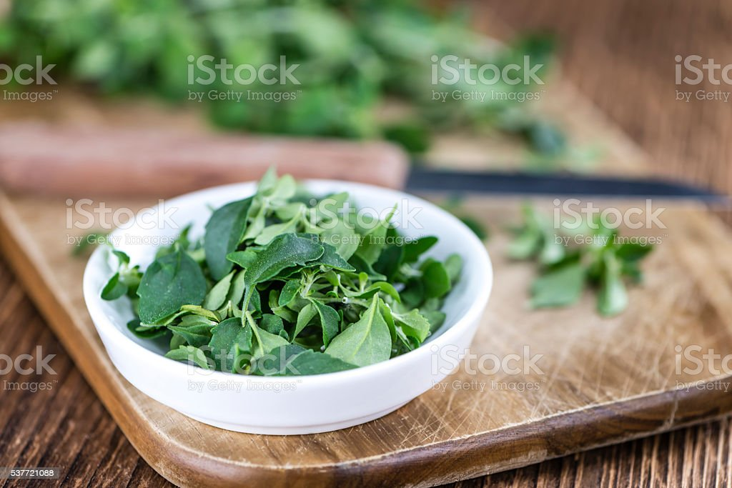 Fresh Menthol Leaves (selective focus) stock photo