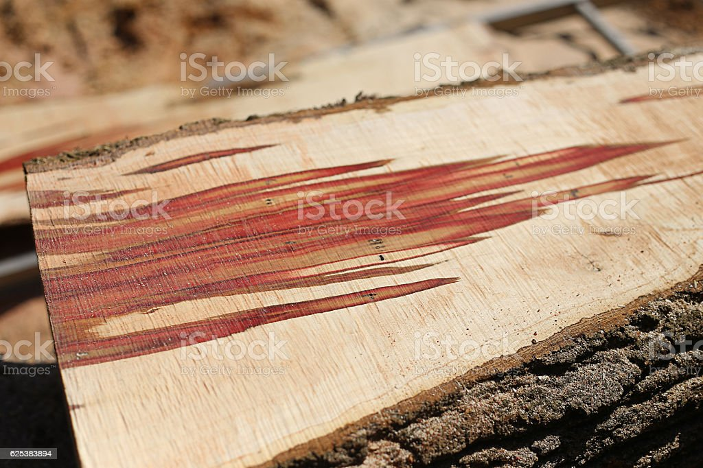 Fresh Milled Piece of Lumber stock photo