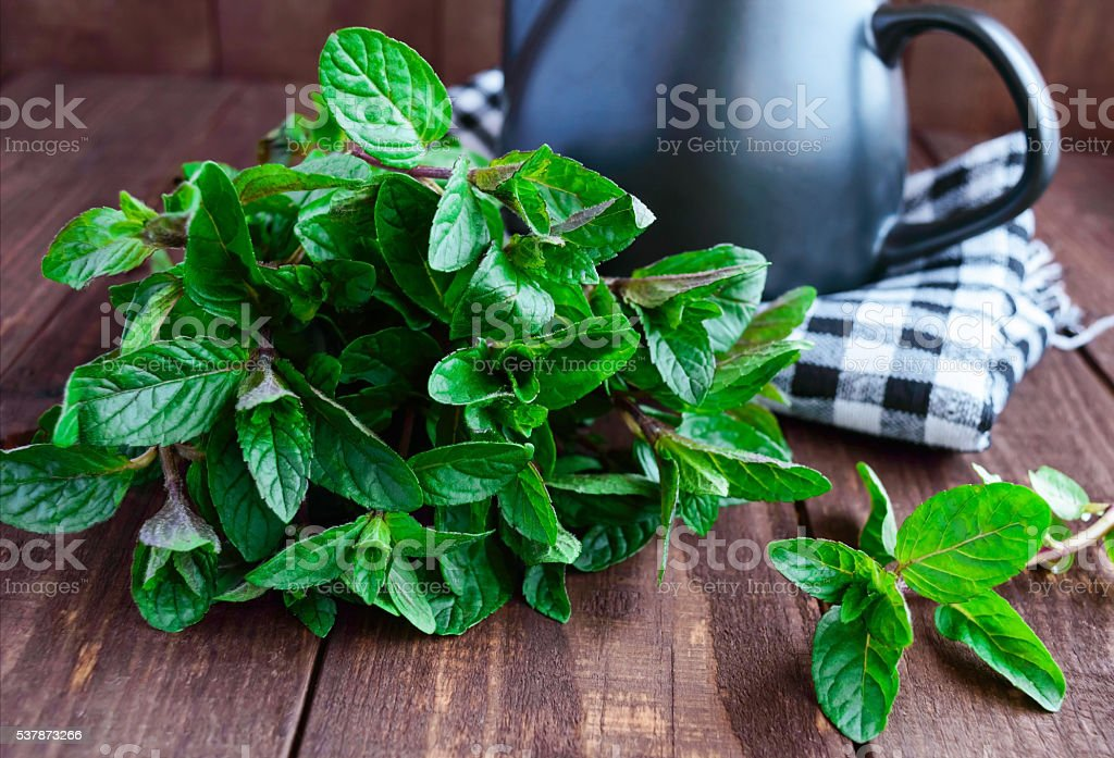 Fresh mint leaves on a wooden background. Mint tea stock photo
