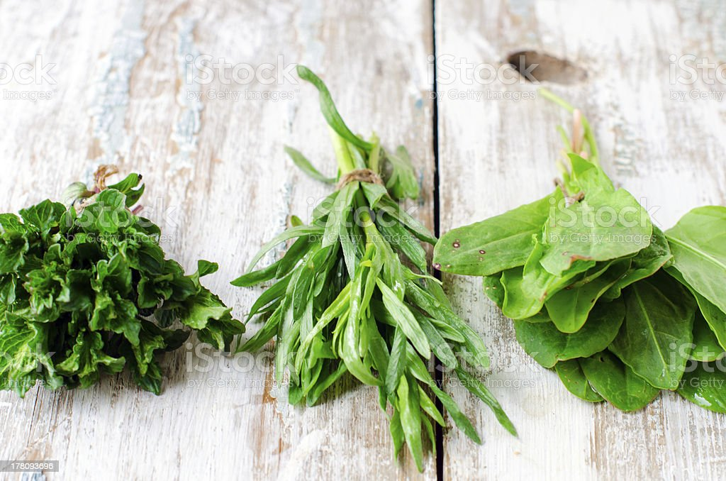 Fresh mint , tarragon and spinach royalty-free stock photo