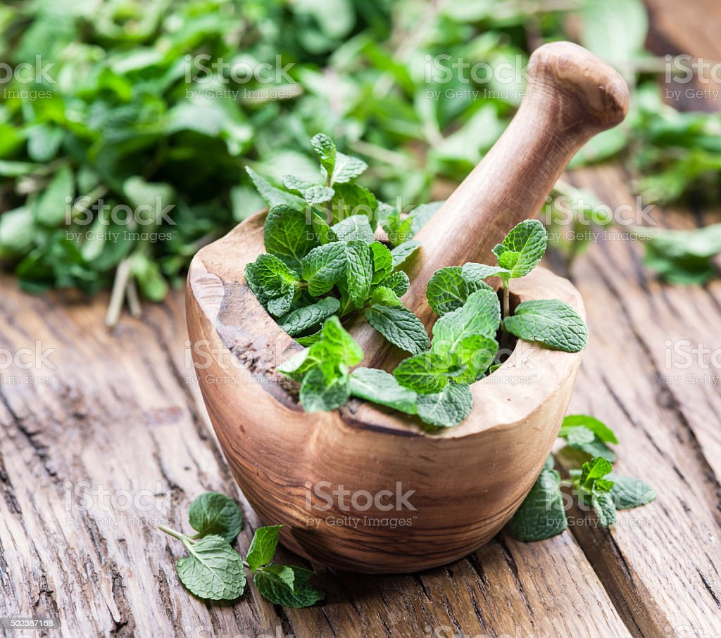 Fresh mint, wooden mortar and pestle. stock photo