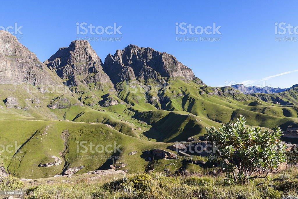 Fresh Mountain Air stock photo