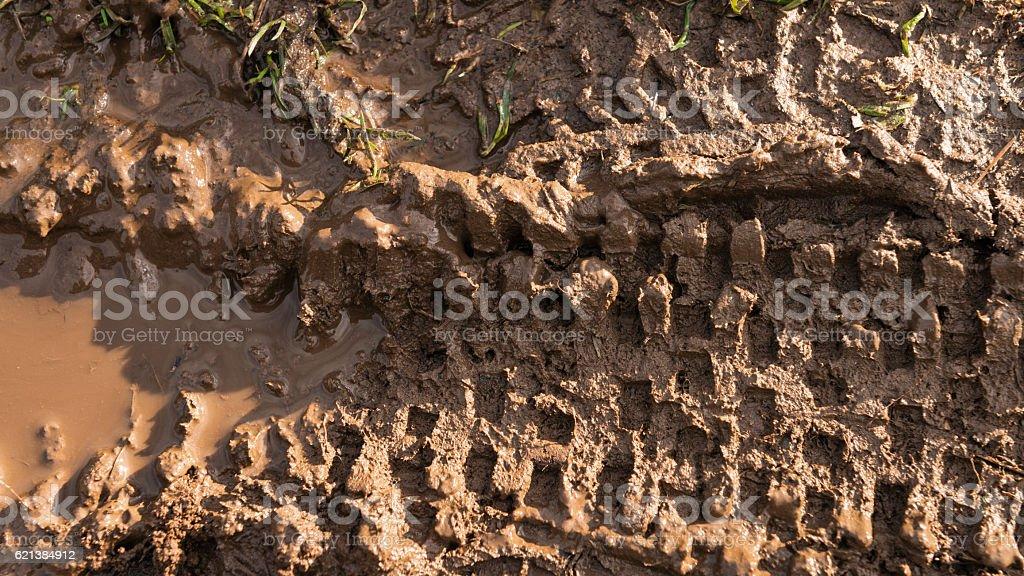 Fresh mountain bike tyre tracks in wet mud stock photo