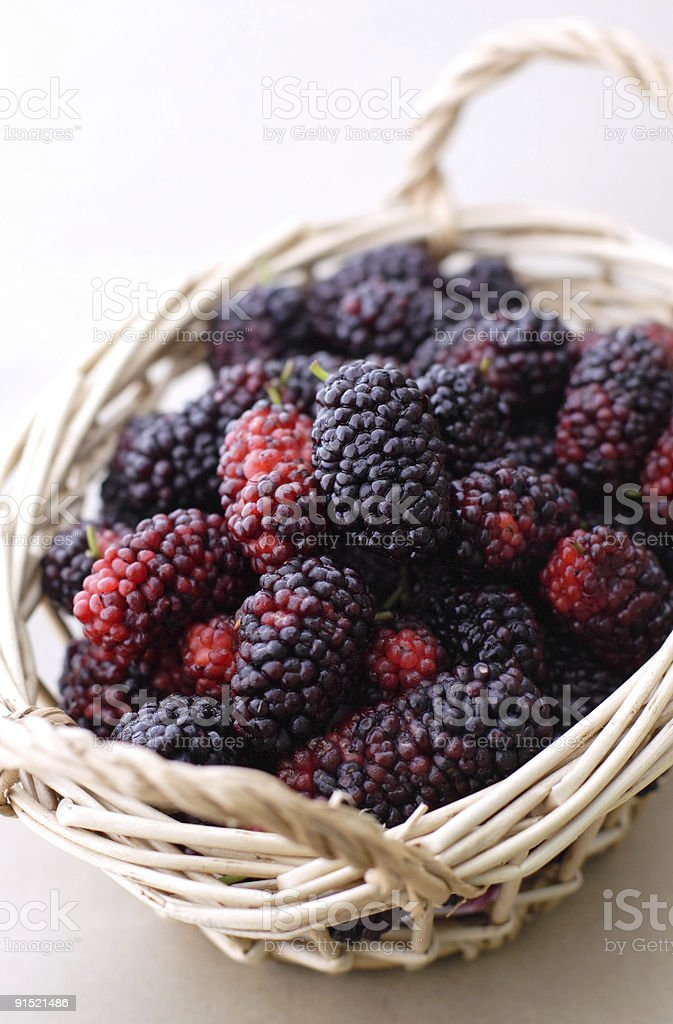 fresh mulberry royalty-free stock photo
