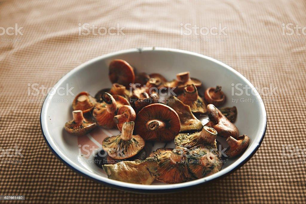 Fresh mushrooms in white bowl stock photo
