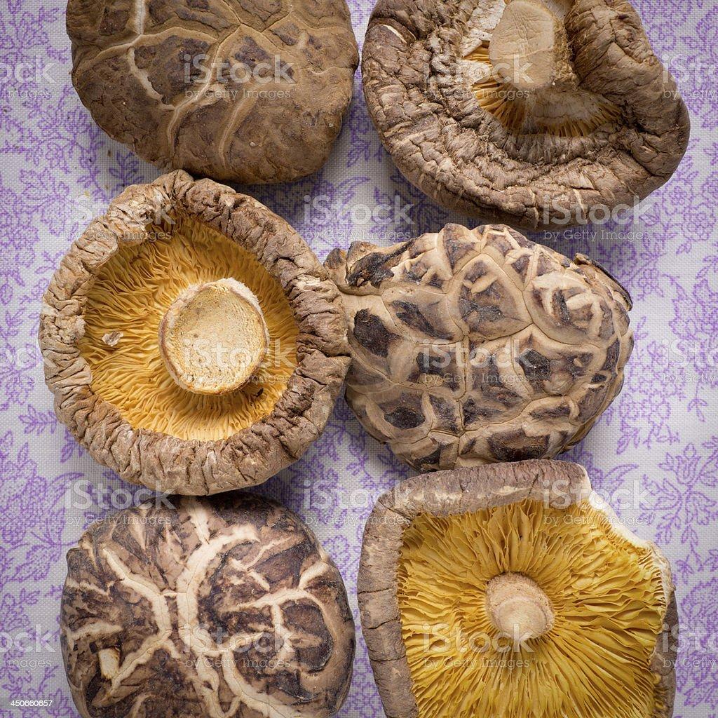 Fresh mushrooms on purple color royalty-free stock photo