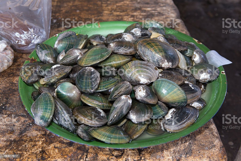 Fresh mussels at the market on Lombok. stock photo