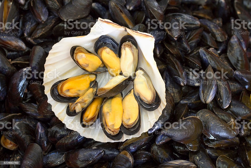 Fresh mussels in France stock photo