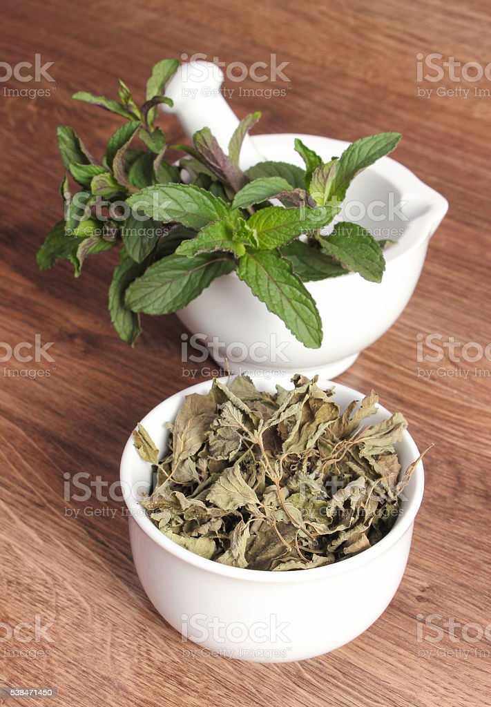 Fresh natural green and dried mint with mortar, healthy lifestyle stock photo