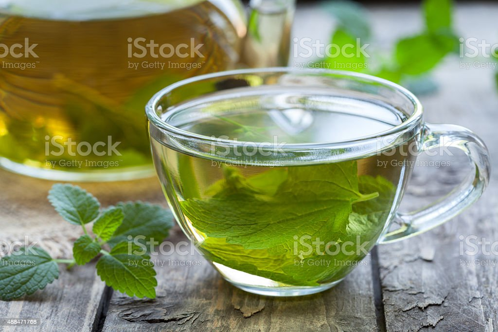 Fresh natural green melissa herbal tea in glass cup. Organic stock photo