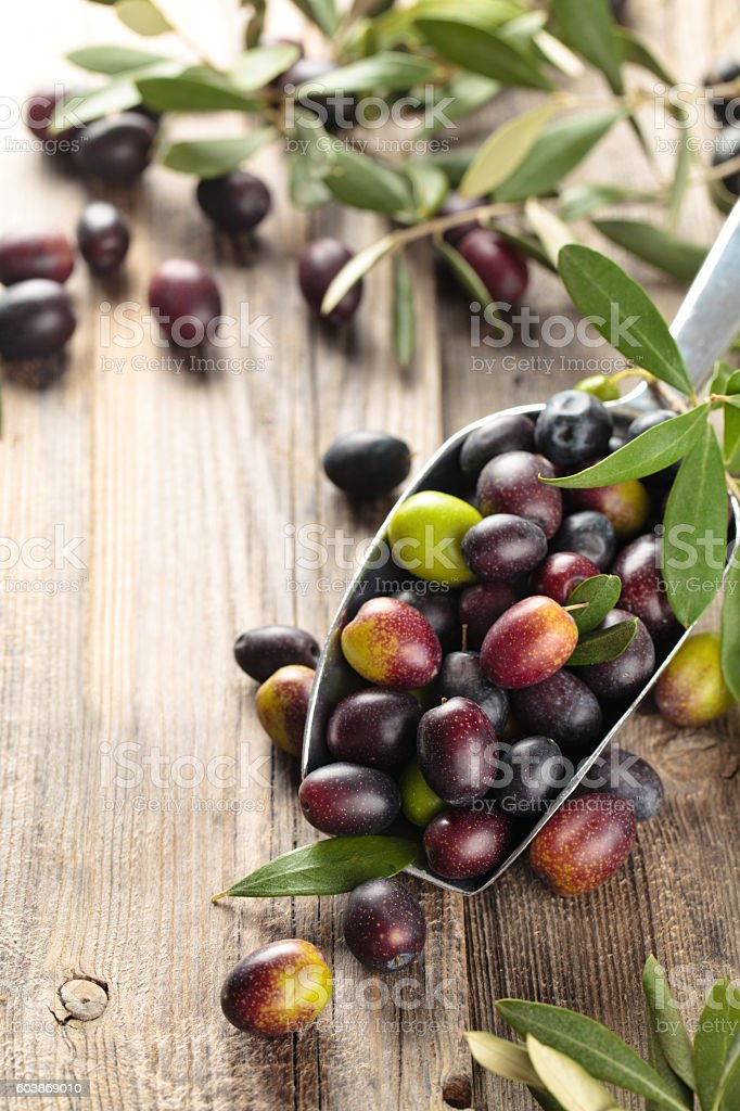 Fresh olives in scoop. stock photo