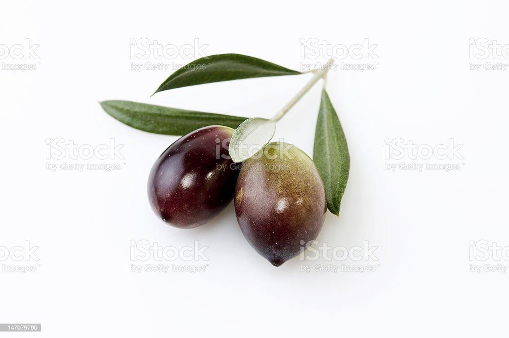Fresh olives stock photo