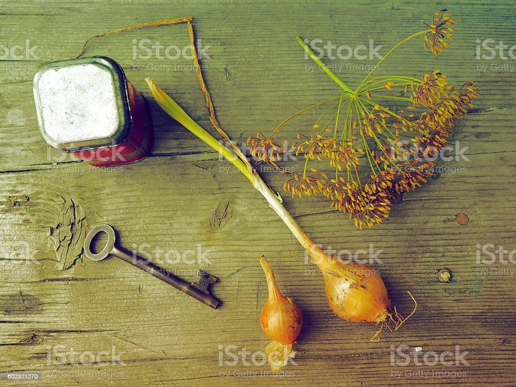 Fresh Onion and Dill Flower with Old Key and Metal Box stock photo