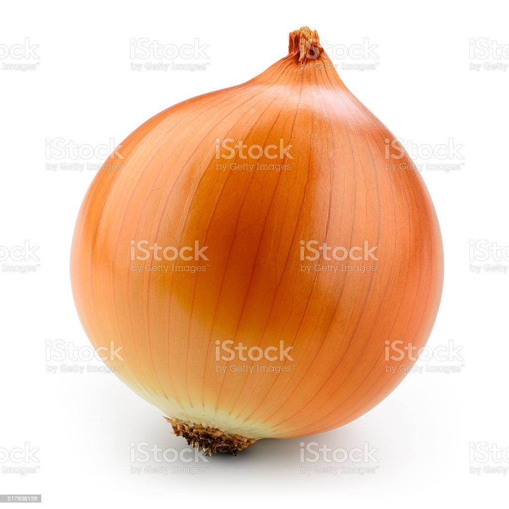 Fresh onion bulb isolated on white. With clipping path. stock photo