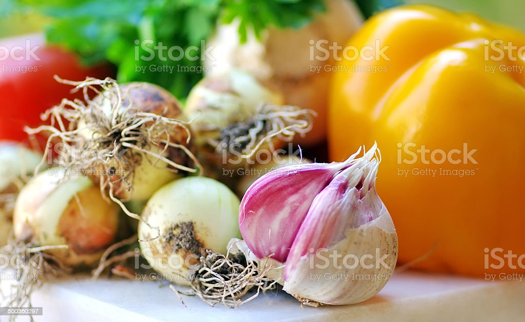 Fresh  onion , garlic and vegetables on table stock photo