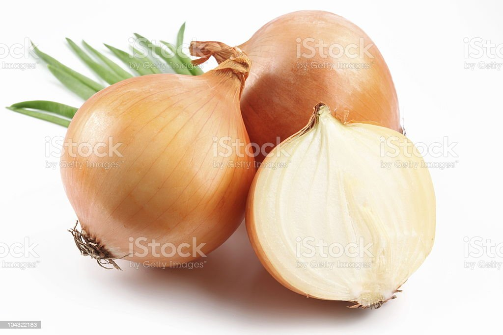 Fresh onion stock photo