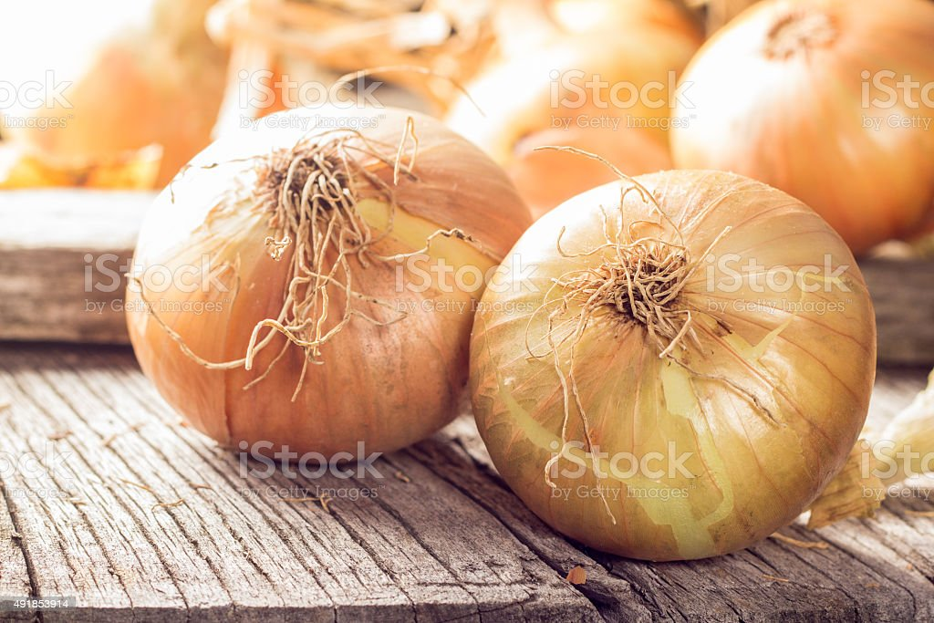 Fresh onions on wooden table stock photo