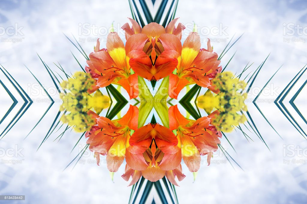 Fresh orange Alstroemeria flowers petal surreal shaped symmetrical kaleidoscope stock photo