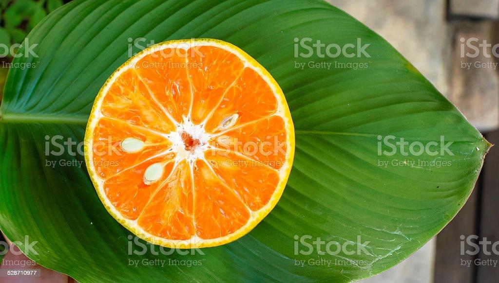 Fresh orange slice royalty-free stock photo