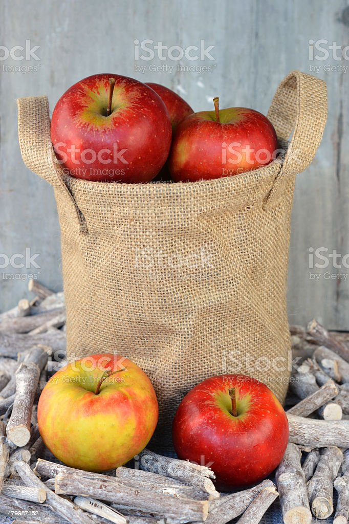 fresh organic apples in jute bag on grey wooden  background stock photo