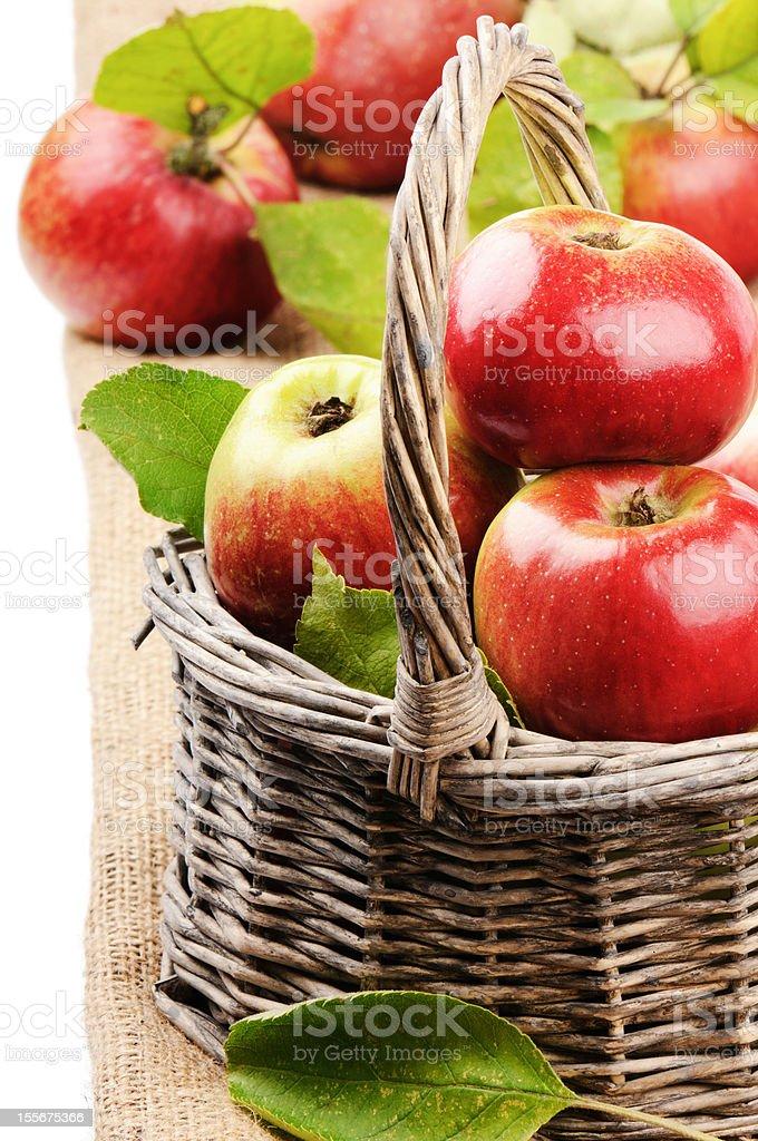 Fresh organic apples in wicker basket royalty-free stock photo