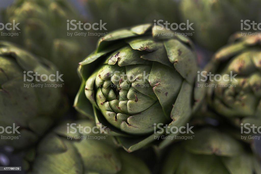 Fresh Organic Artichokes royalty-free stock photo