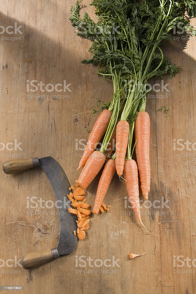 Fresh organic carrots royalty-free stock photo