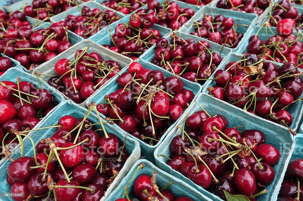 Fresh organic cherries at a farmers market stock photo