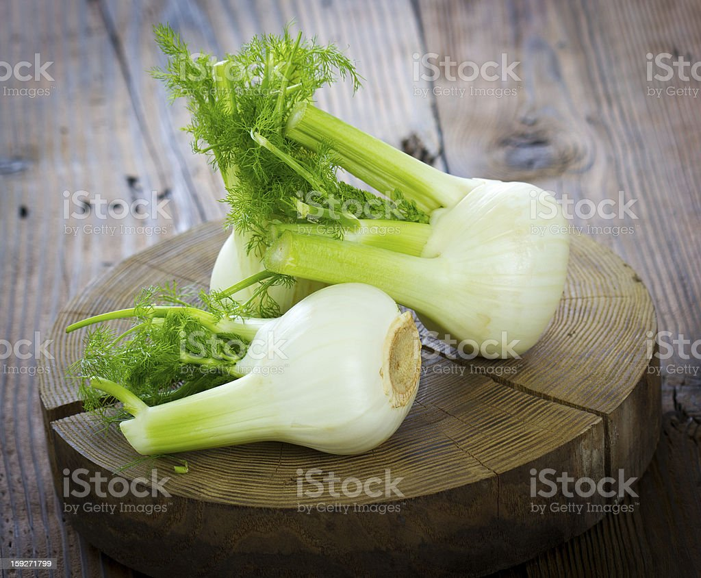 Fresh organic fennel stock photo