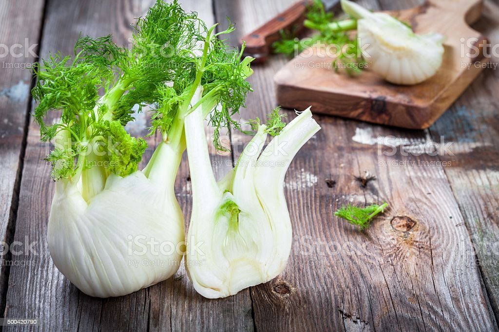 Fresh organic fennel stock photo