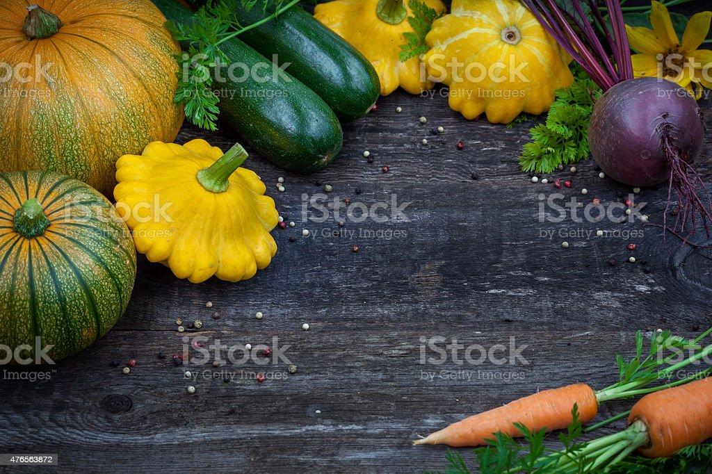 Fresh organic gardening vegetables stock photo