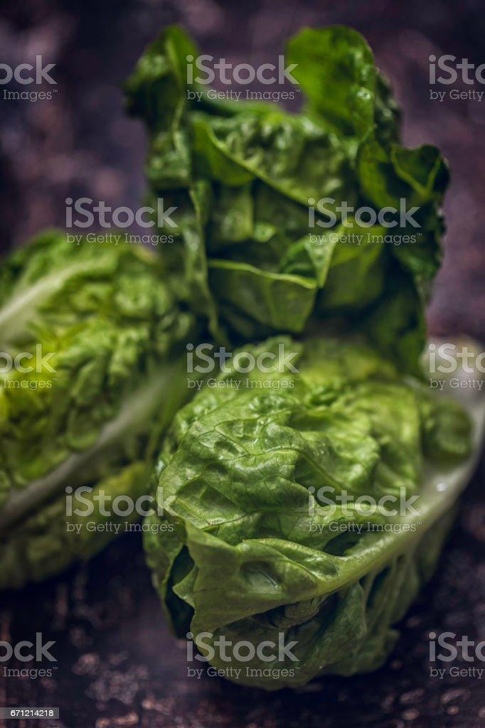 Fresh Organic Green Salad on Rustic Background royalty-free stock photo