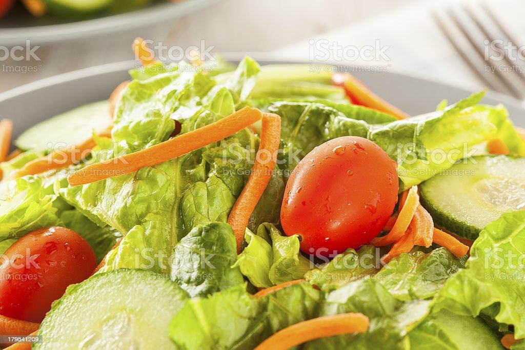 Fresh Organic Green Salad royalty-free stock photo