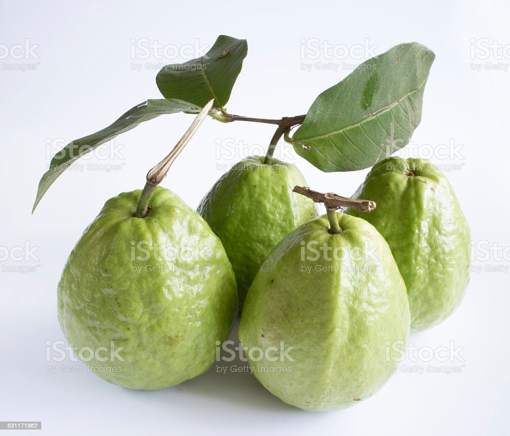 Fresh organic guava fruit. stock photo