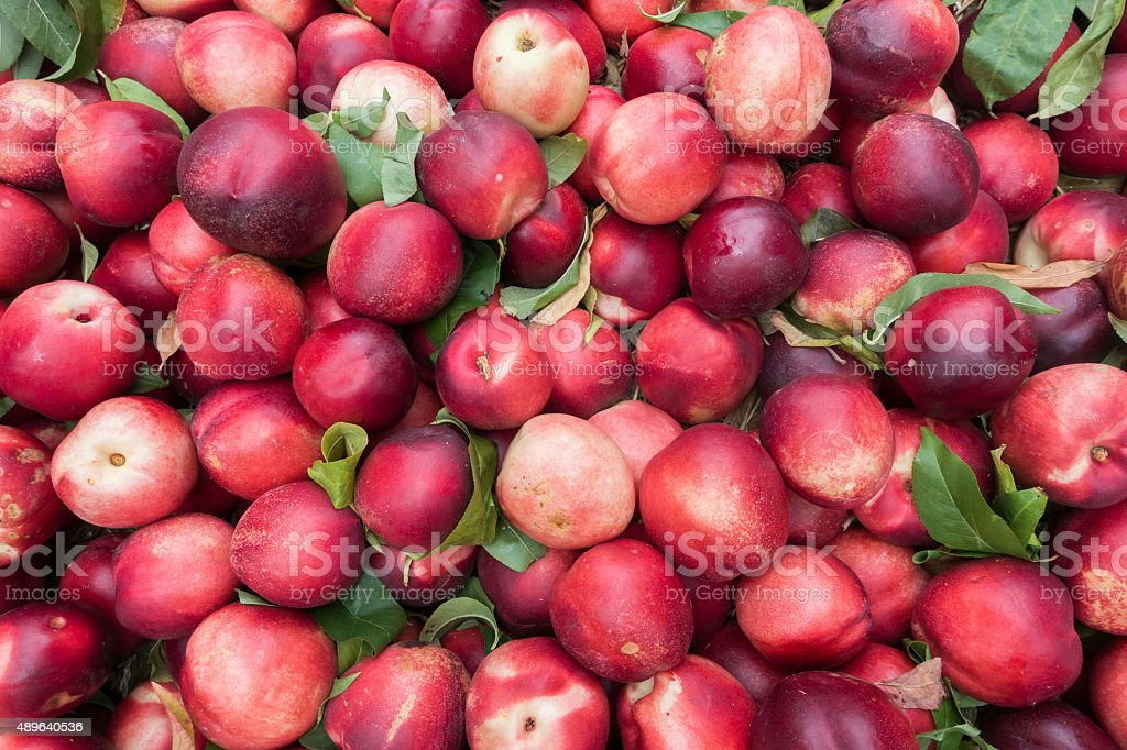 Fresh organic nectarines for sale at a farmers market stock photo