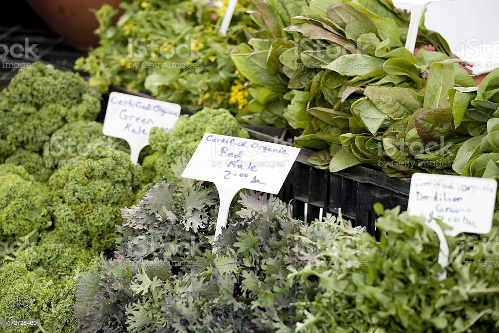 Fresh organic red kale at farmers market stock photo