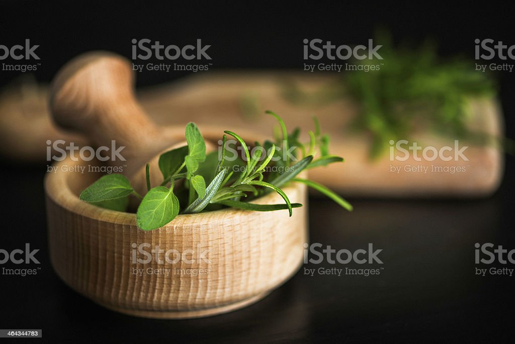 Fresh Organic Rosemary and Oregano in Mortar royalty-free stock photo