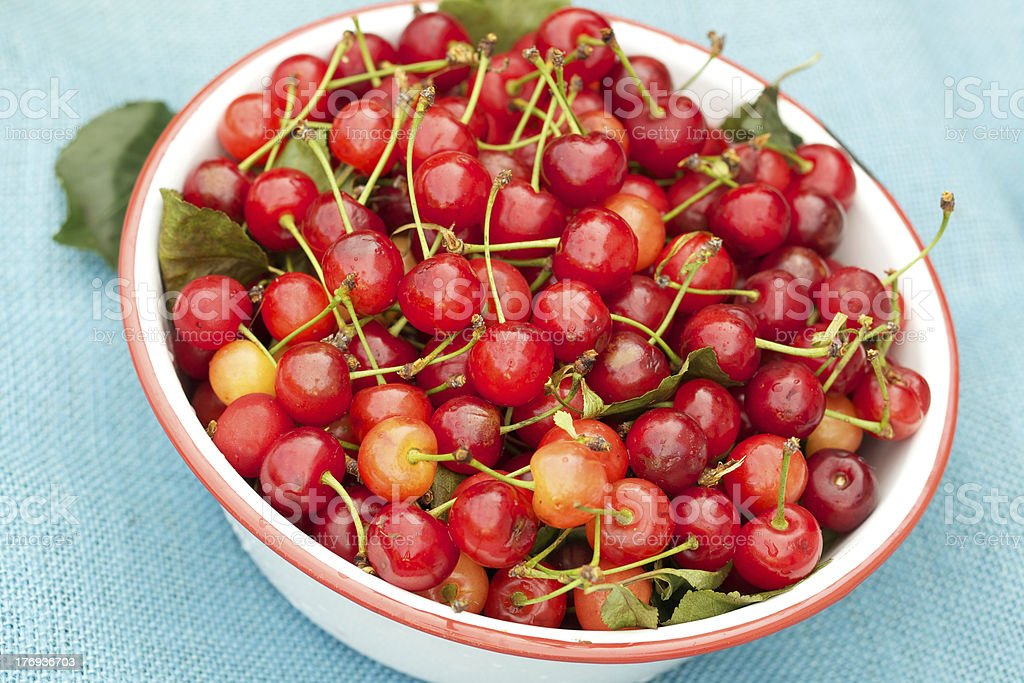 Fresh organic sour cherries and bowl on blue burlap royalty-free stock photo