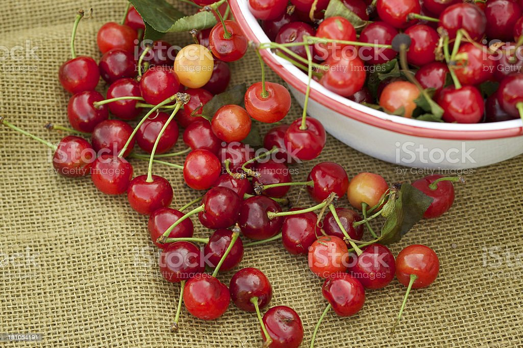 Fresh organic sour cherries and bowl on brown burlap stock photo