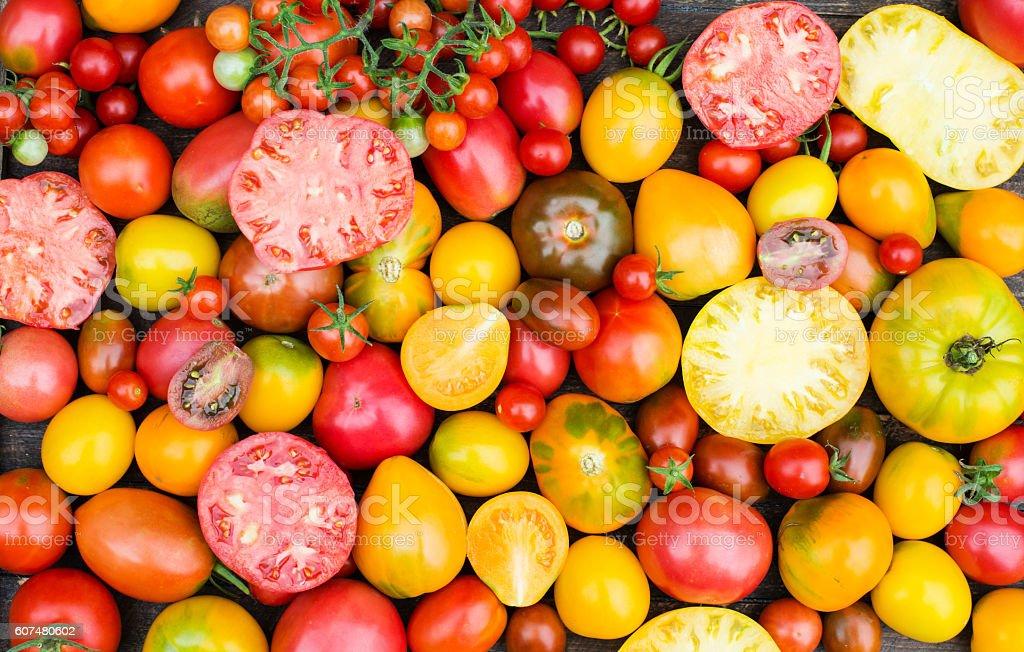 Fresh Organic Tomatoes. Colorful Tomatoes Background. stock photo