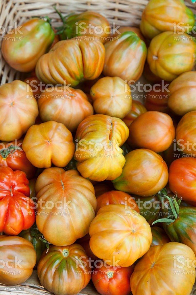 Fresh organic tomatoes royalty-free stock photo