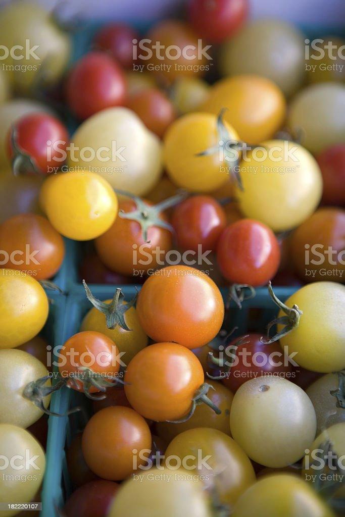 Fresh Organic Toy Box Tomatoes royalty-free stock photo