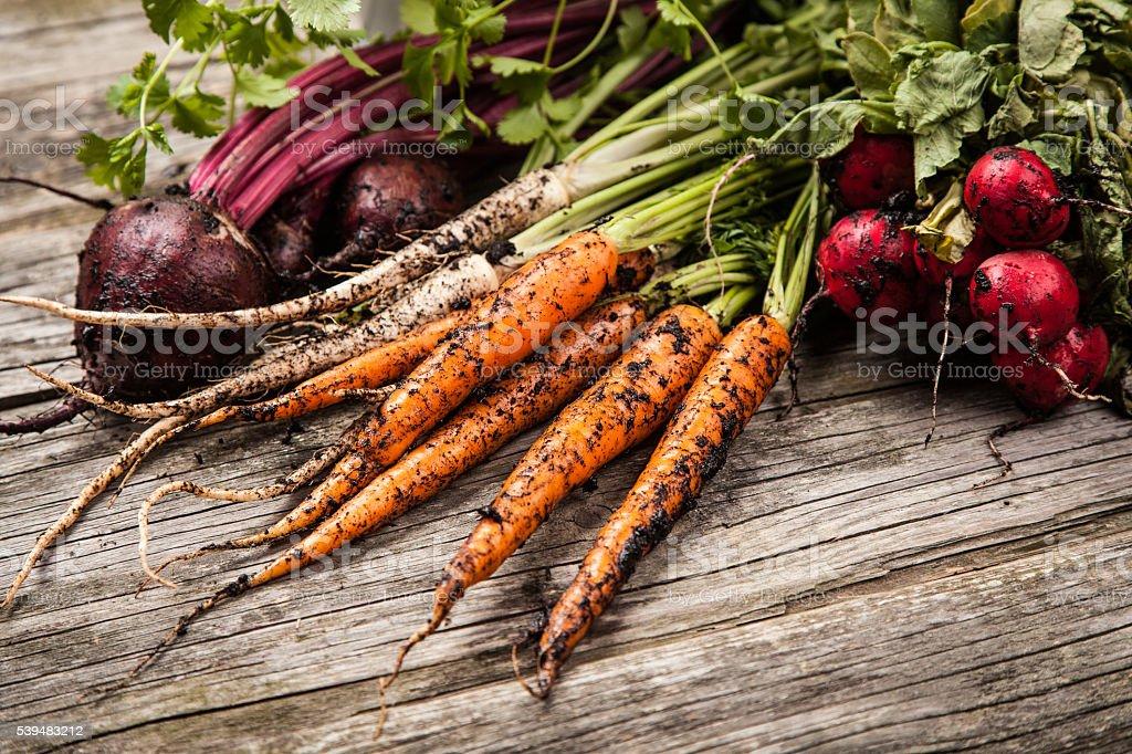 Fresh organic vegetables stock photo