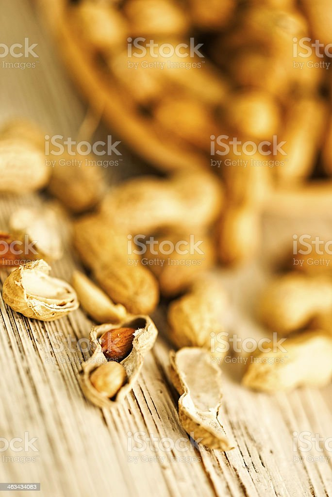 Fresh Organic Virginia Peanuts stock photo