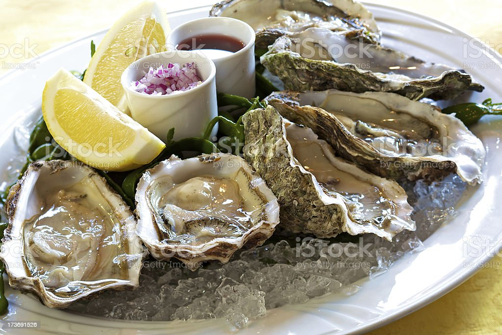 Fresh oysters on ice royalty-free stock photo