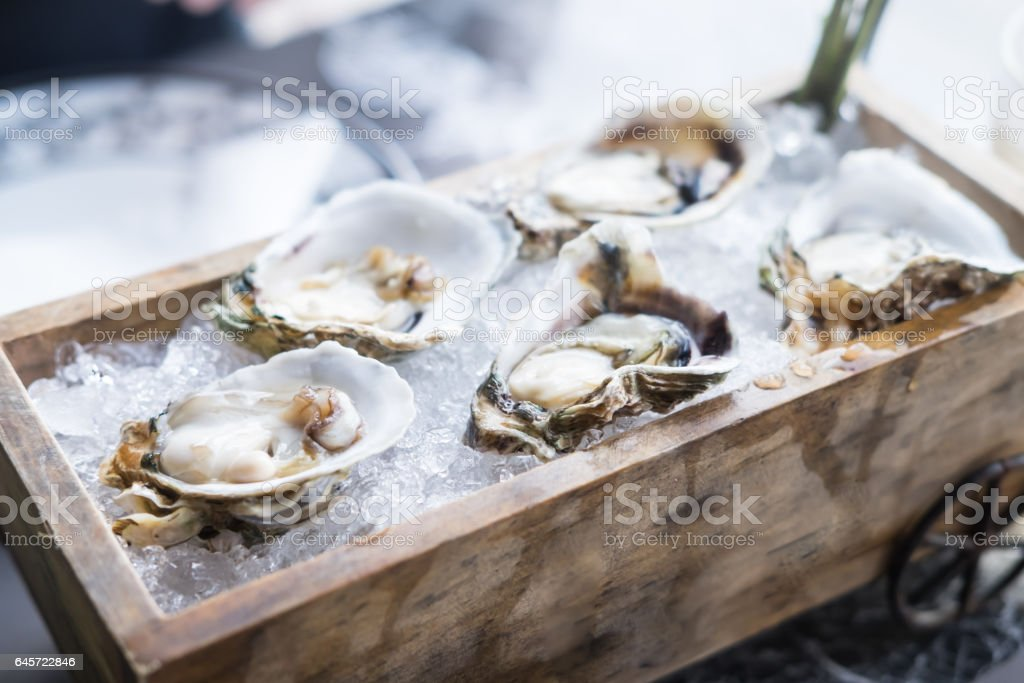 Fresh oysters on wooden tray, food background stock photo