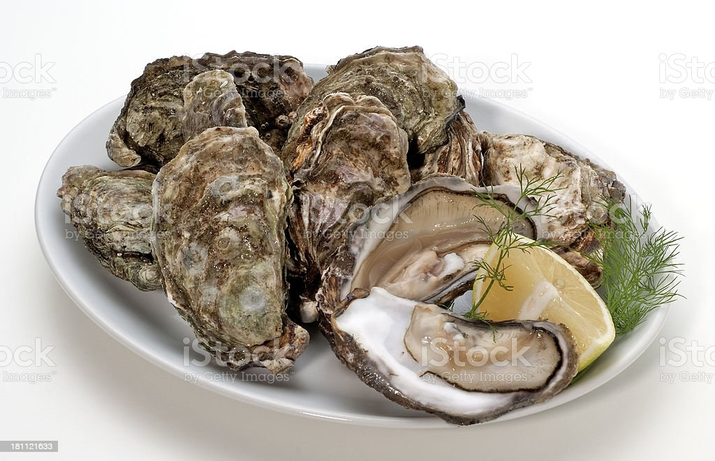 Fresh oysters(+clipping path) royalty-free stock photo