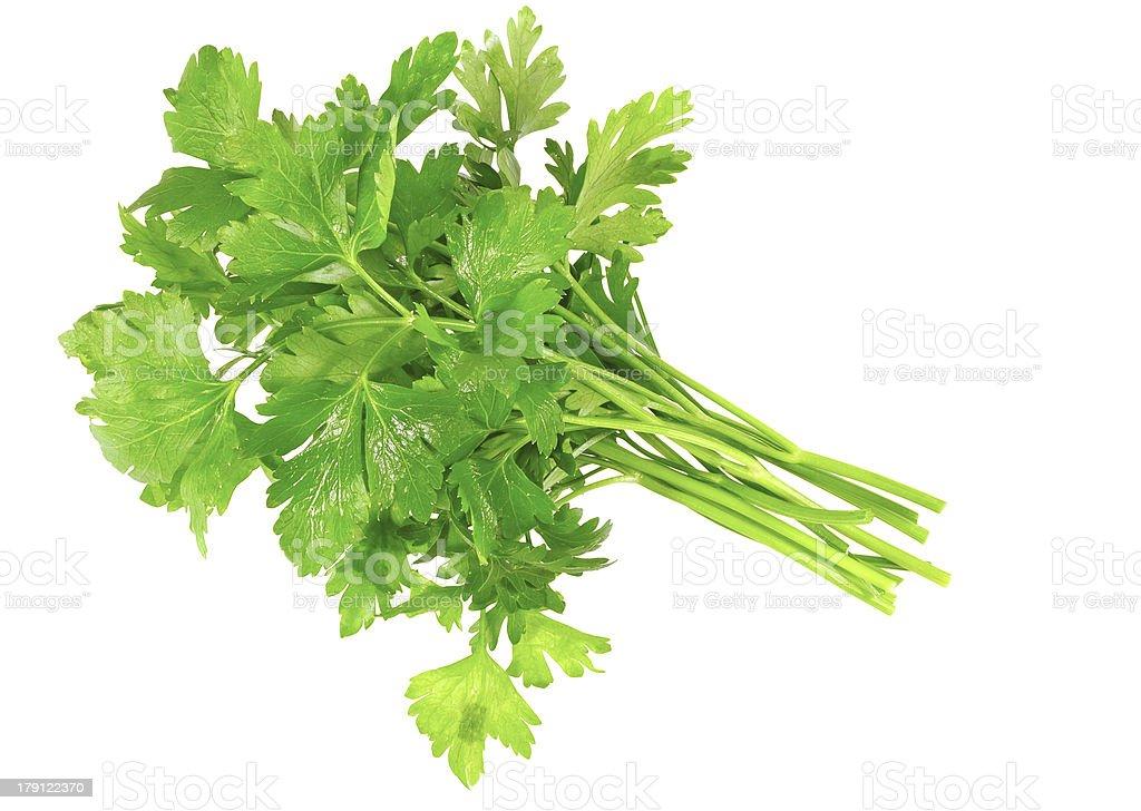 Fresh parsley on white background. Isolated royalty-free stock photo